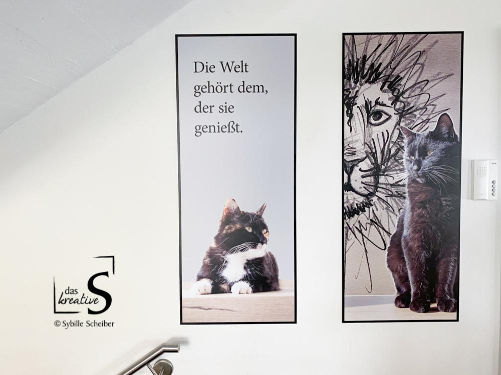 Kunstdrucke unserer Katzen