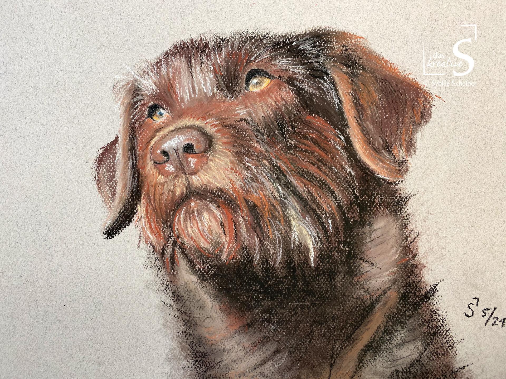 Kreidezeichnung eines Hundes